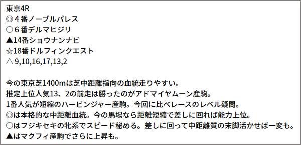 6/13(日)東京4R 予想本文