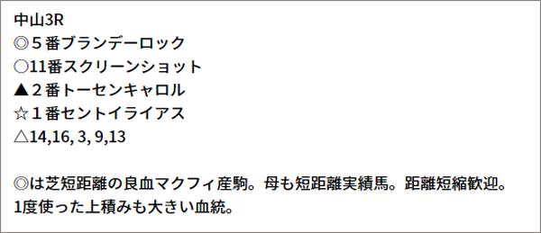 9/18(土) 中山3R 予想