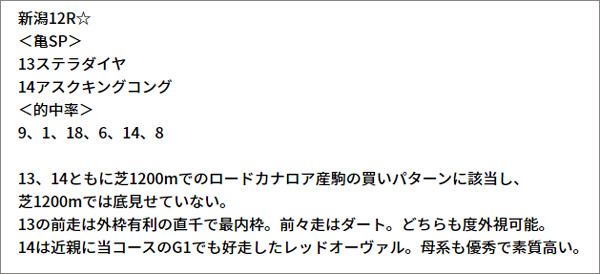 10/9(土) 新潟12R 予想