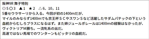 6/27(日) 阪神9R 予想