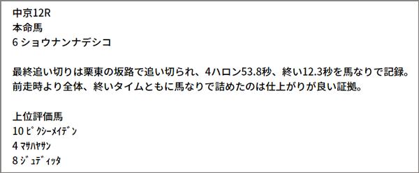 6/12(土) 中京12R 予想本文