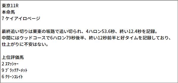 6/20(日) 東京11R 予想